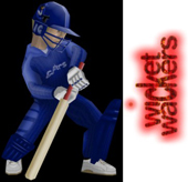 Free 3D Wicket Wackers 2004 Game