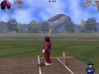 3D Wicket Wackers 2004 Game screenshot 2