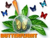 Free ButterFlight Game