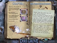 Mystery Case Files: Dire Grove Strategy Guide Game screenshot 3