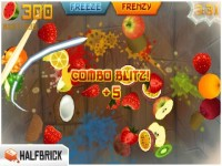 Fruit Ninja iPhone Download iPhone Game image 4