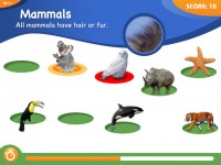 Free Animal Genius Mac Game Download