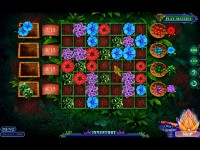 Download Enchanted Kingdom: Descent of the Elders Collector's Edition Mac Games Free