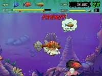 Download Feeding Frenzy Mac Games Free