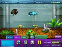 Free FishCo Mac Game Download