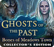Free Ghosts of the Past: Bones of Meadows Town Collector's Edition Mac Game