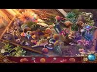 Free Nevertales: Hearthbridge Cabinet Mac Game Free