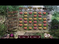Download Otherworld: Shades of Fall Collector's Edition Mac Games Free