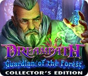 Free Dreampath: Guardian of the Forest Collector's Edition Game