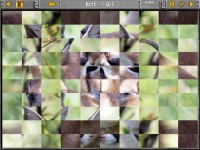Sliders and Other Square Jigsaw Puzzles Games Download screenshot 3